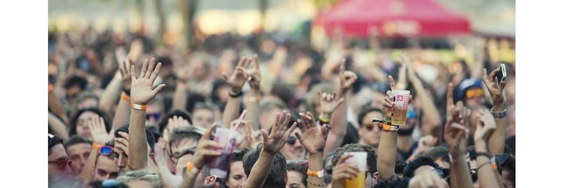 Festival Drugs Buy Legal Highs Online