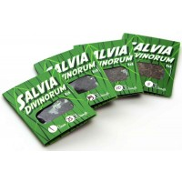 Salvia Divinorum Extract x10 Strength Legal High